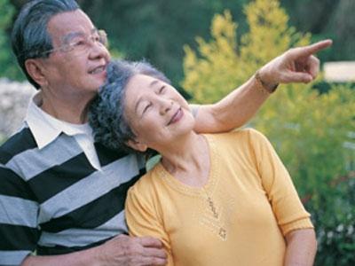Yến sào: nguồn dinh dưỡng cho người già